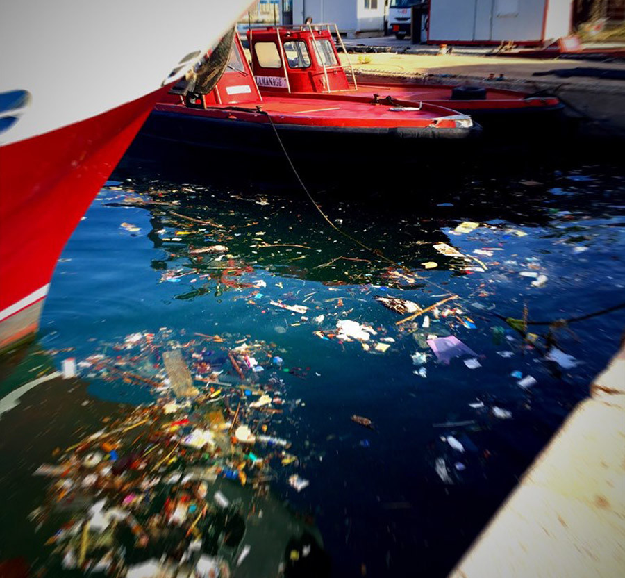 Litter in water in marina