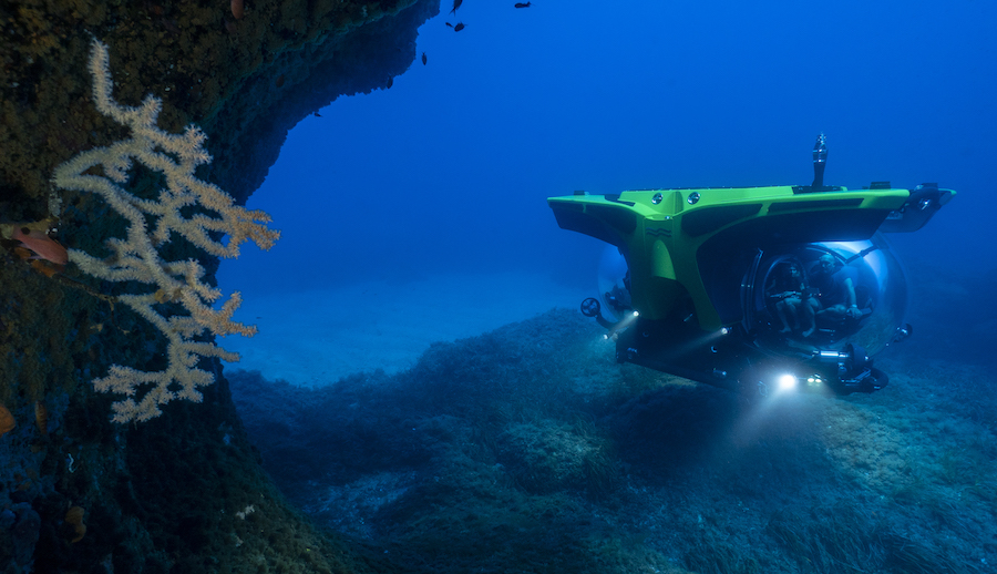 A submersible big enough for the whole family to explore - Cookson Adventures